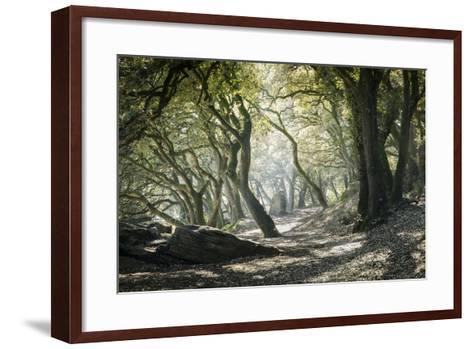 Noirmoutier Island-Philippe Manguin-Framed Art Print