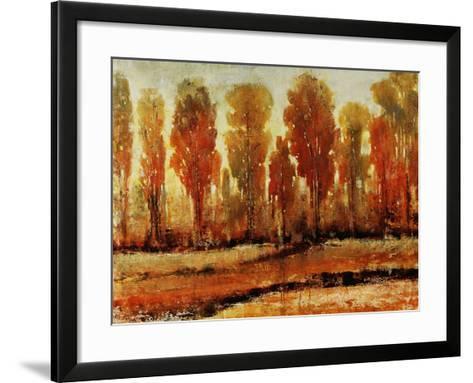 Texture of Trees-Tim O'toole-Framed Art Print