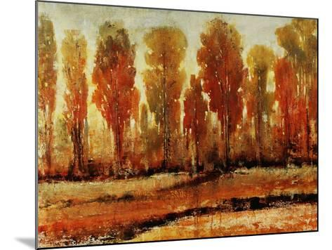 Texture of Trees-Tim O'toole-Mounted Giclee Print