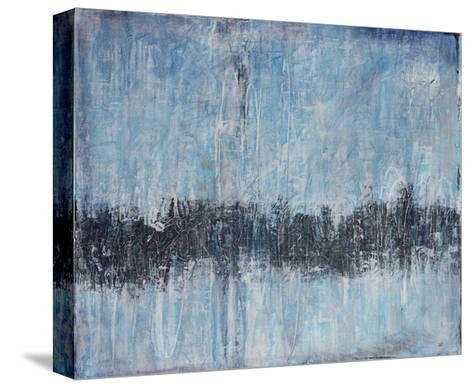 Evanescent-Joshua Schicker-Stretched Canvas Print