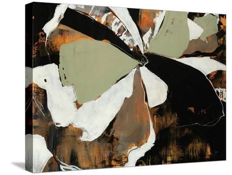 Harlequin-Sydney Edmunds-Stretched Canvas Print