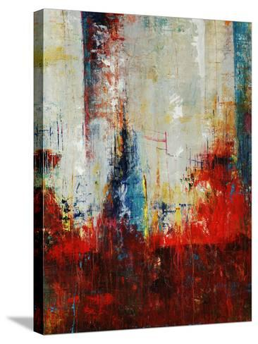 Elixir-Joshua Schicker-Stretched Canvas Print