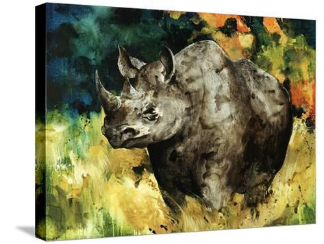 Black Rhino-Sydney Edmunds-Stretched Canvas Print