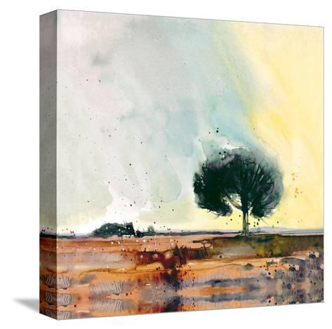 New Forest Study-Simon Howden-Stretched Canvas Print