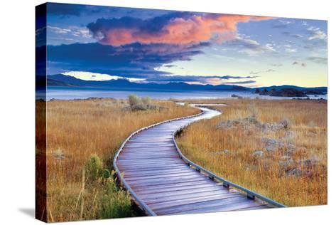 Pathway to Mono Lake-Dennis Frates-Stretched Canvas Print
