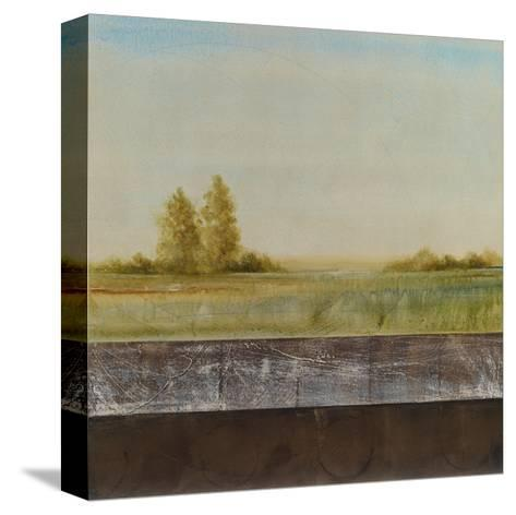 Quiet Grace 1-Cheryl Martin-Stretched Canvas Print