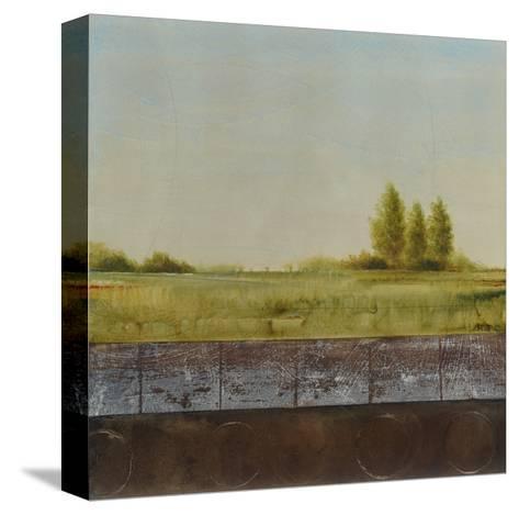 Quiet Grace 2-Cheryl Martin-Stretched Canvas Print