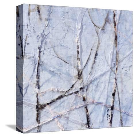A Muliplicity of Singularity II-Danna Harvey-Stretched Canvas Print