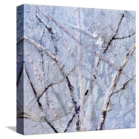 A Muliplicity of Singularity III-Danna Harvey-Stretched Canvas Print