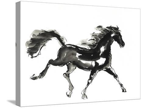 Horse H4-Chris Paschke-Stretched Canvas Print