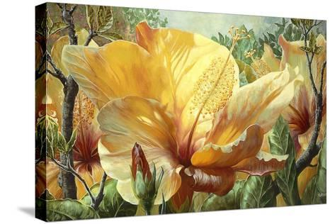 Golden Hibiscus-Elizabeth Horning-Stretched Canvas Print