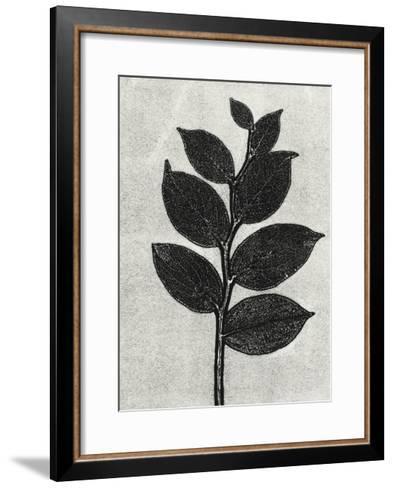 New Salal 1-Mary Margaret Briggs-Framed Art Print