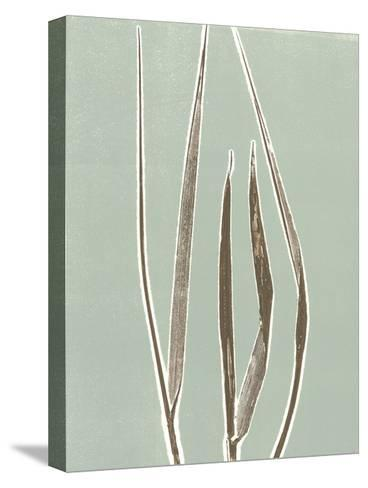 Tall Grass 1-Mary Margaret Briggs-Stretched Canvas Print