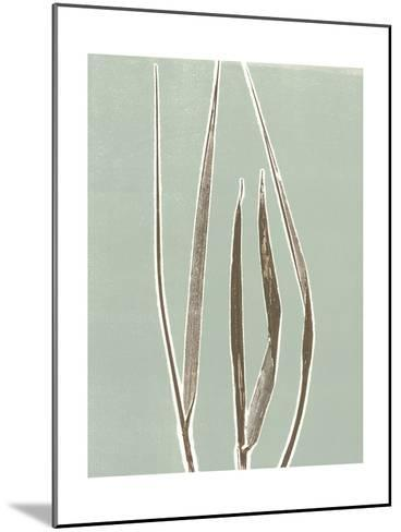 Tall Grass 1-Mary Margaret Briggs-Mounted Premium Giclee Print