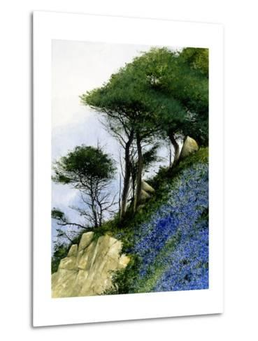 Spring on a Slant-Miguel Dominguez-Metal Print