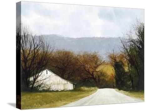 A Drive Through Fall-Miguel Dominguez-Stretched Canvas Print