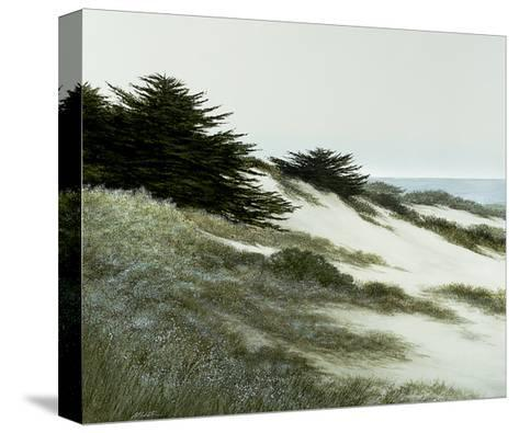 Blue Pacific-Larry Miller-Stretched Canvas Print