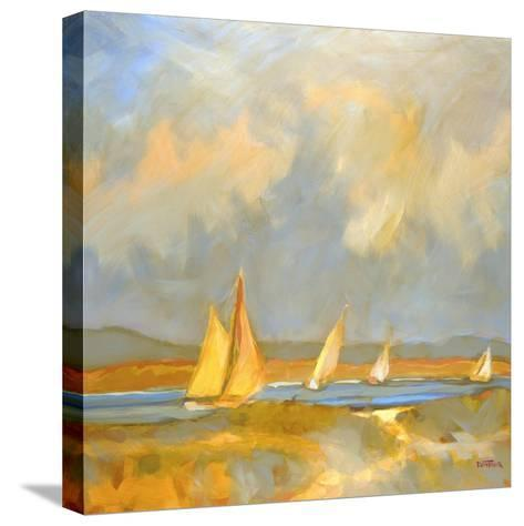 Whidbey Island Beach-Don Tiller-Stretched Canvas Print