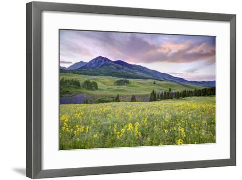 USA, Colorado, Crested Butte. Landscape of wildflowers and mountain.-Dennis Flaherty-Framed Art Print