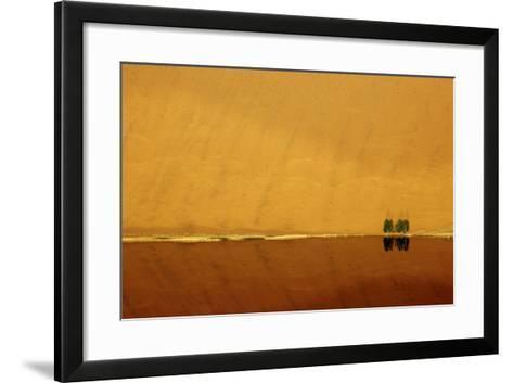 Desert reflection. Badain Jaran Desert, Inner Mongolia, China.-Ellen Anon-Framed Art Print