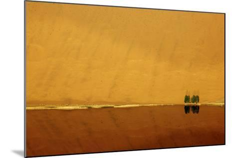 Desert reflection. Badain Jaran Desert, Inner Mongolia, China.-Ellen Anon-Mounted Photographic Print