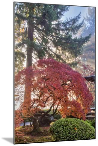 Japanese Gardens in autumn in Portland, Oregon, USA-Chuck Haney-Mounted Photographic Print