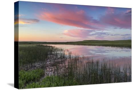 Prairie pond at sunrise in Garfield County near Jordan, Montana, USA-Chuck Haney-Stretched Canvas Print