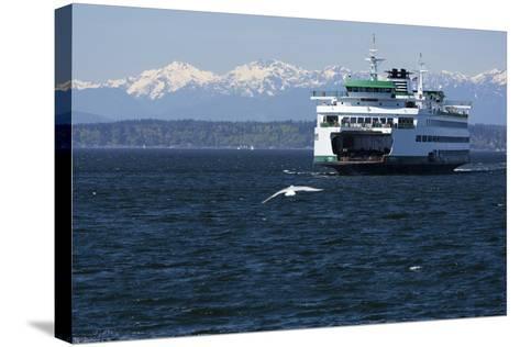 Ferry approaching Colman Dock on Elliott Bay, Seattle, Washington, USA-Jamie & Judy Wild-Stretched Canvas Print