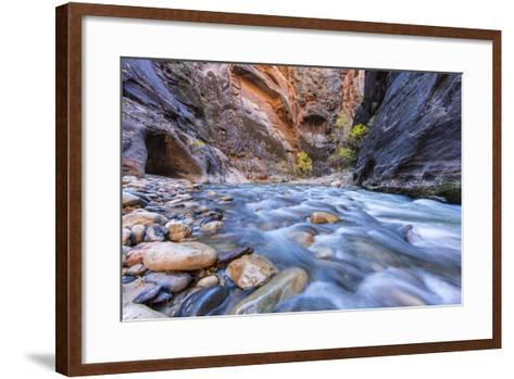 The Narrows of the Virgin River in autumn in Zion NP, Utah, USA-Chuck Haney-Framed Art Print