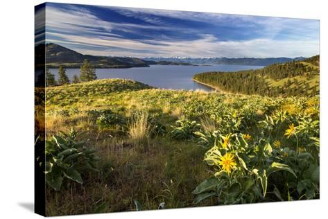 Flathead Lake seen from a ridge top, Wild Horse Island SP, Montana-Chuck Haney-Stretched Canvas Print