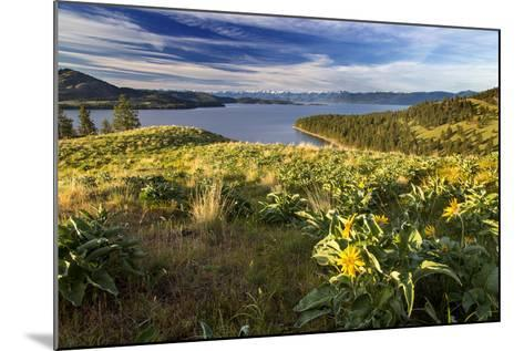 Flathead Lake seen from a ridge top, Wild Horse Island SP, Montana-Chuck Haney-Mounted Photographic Print