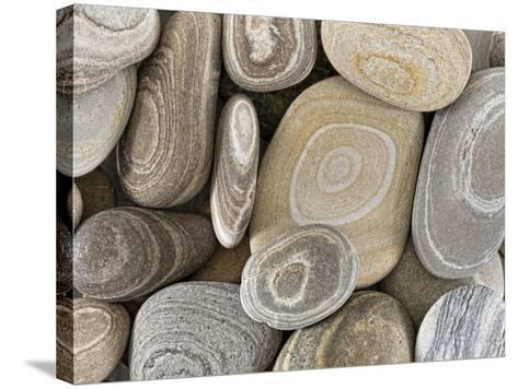 USA, Washington, Seabeck. Close-up of beach stones.-Don Paulson-Stretched Canvas Print