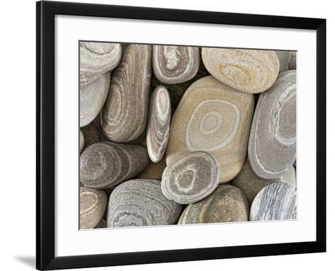 USA, Washington, Seabeck. Close-up of beach stones.-Don Paulson-Framed Art Print