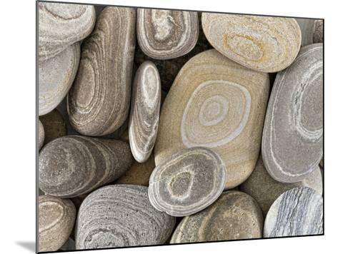 USA, Washington, Seabeck. Close-up of beach stones.-Don Paulson-Mounted Photographic Print