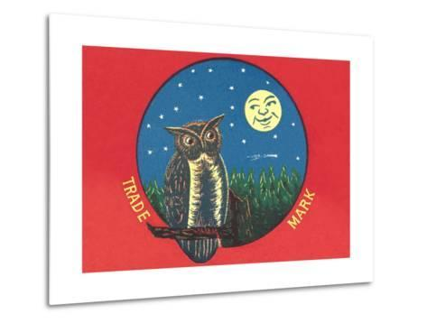 Owl and Moon--Metal Print