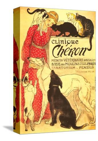 Clinique Cheron, Vet--Stretched Canvas Print
