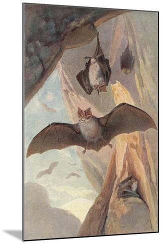 Bats in Cave--Mounted Art Print