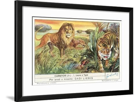 Lions and Tiger--Framed Art Print