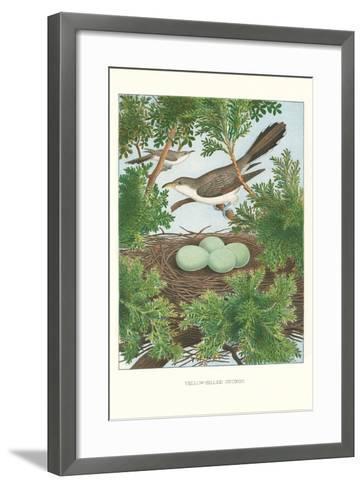 Yellow-Billed Cuckoo--Framed Art Print