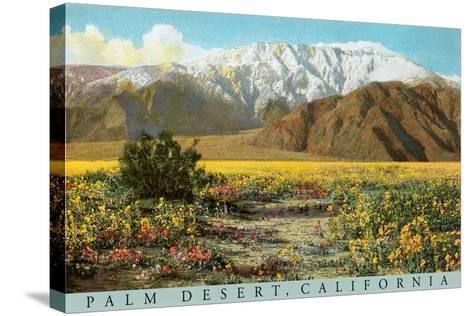 Palm Desert Scene--Stretched Canvas Print