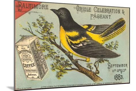 Baltimore Oriole Pageant--Mounted Art Print