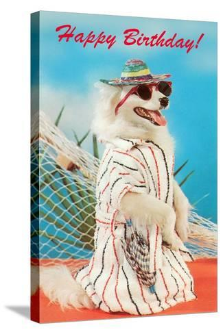 Dog in Sungglasses--Stretched Canvas Print