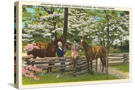 Dogwood Blossoms, Horses--Stretched Canvas Print