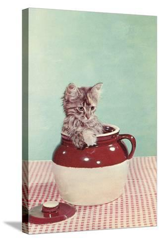 Kitten in a Jug--Stretched Canvas Print
