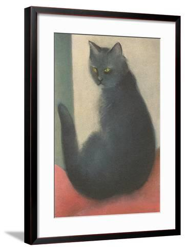Suspicious Cat--Framed Art Print
