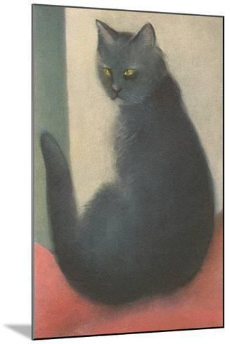 Suspicious Cat--Mounted Art Print