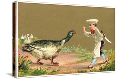 Little Chef Luring Goose--Stretched Canvas Print