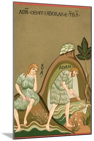 Medieval Illusttration, Adam and Eve--Mounted Art Print