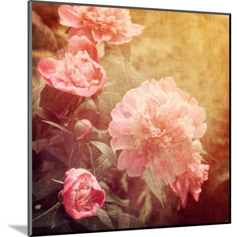 Art Floral Vintage Background with Pink Peonies-Irina QQQ-Mounted Art Print