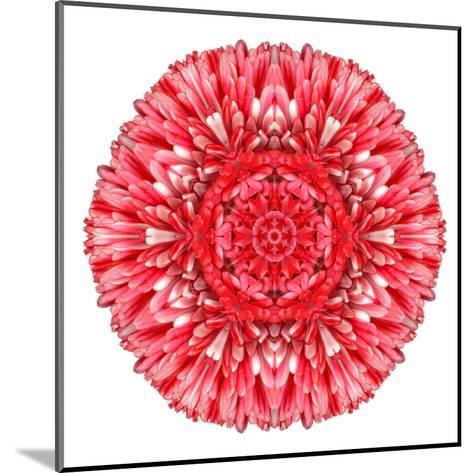 Red Daisy Mandala Flower Kaleidoscopic-tr3gi-Mounted Art Print